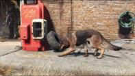 Fallout-4-trailer-034